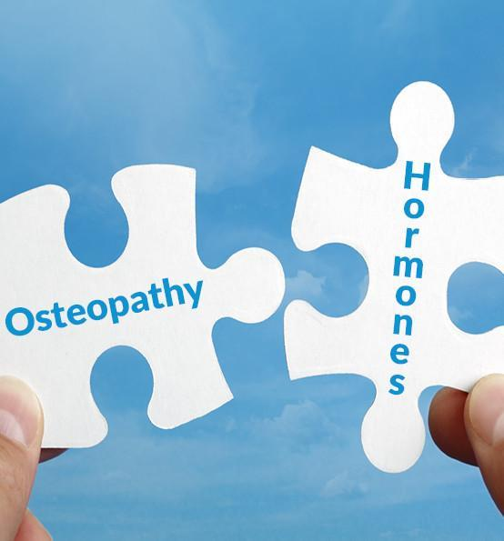 Hormones and their osteopathy: an osteosophical conceptualisation – Part 2