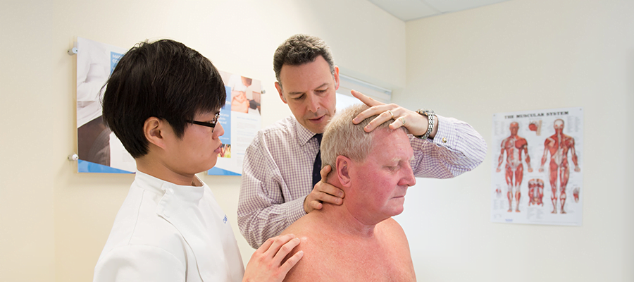 Osteopath training at the ESO