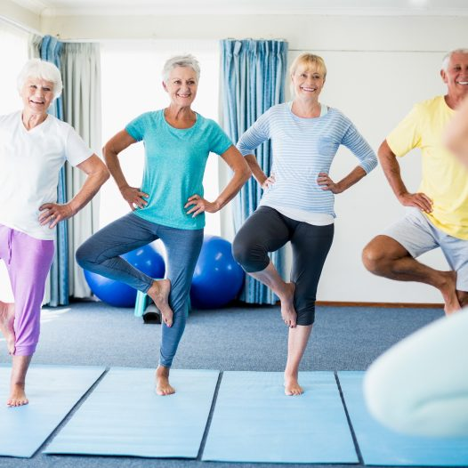 Balance & Stability Classes at Boxley