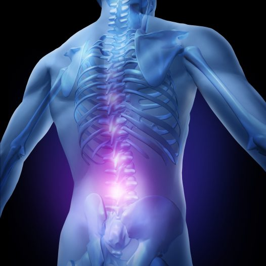 Osteopathic Spinal Articulation and Adjustment